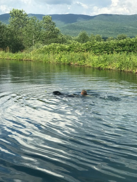 swimming with Nox