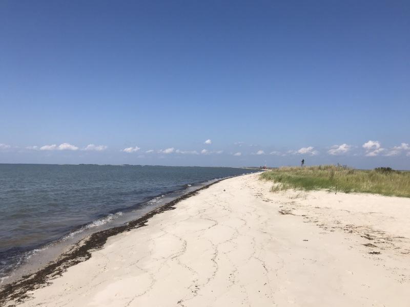 Jane's island state park